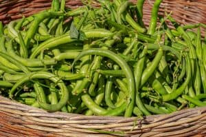 Green beans should be a part of your reflux diet.